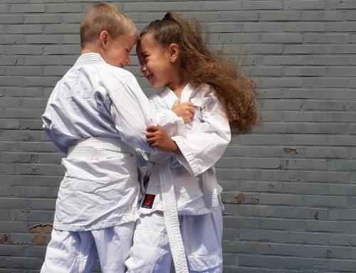 Clinic | Judo Vallen en Opvang